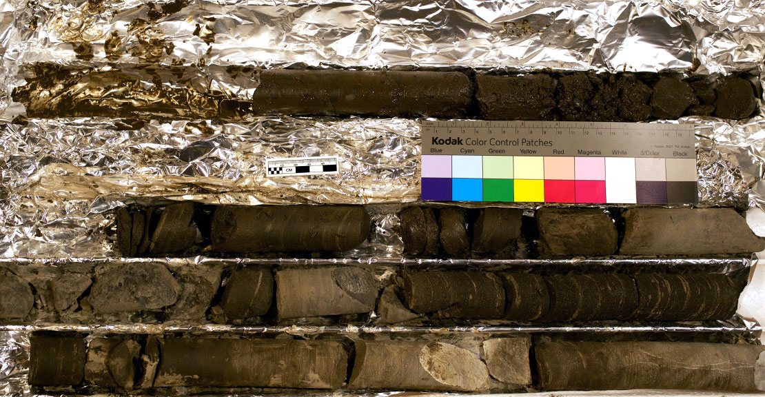 Core Samples from Monterey mudstones